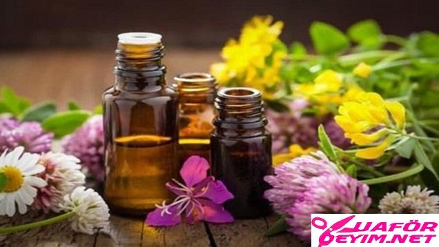 Aromatik Yağlar ve Özellikleri- Bitkisel Yağların Psikolojik Etkileri