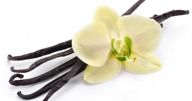 Vanilyanın Faydaları ve Kullanım Önerileri