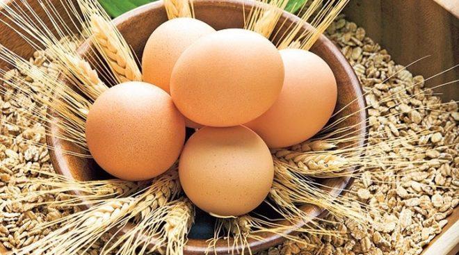 Maske Tarifleri Yumurta