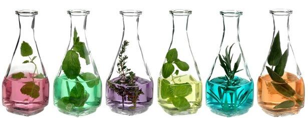 Bitkisel Yağlar ve Özellikleri - Cilt Bakımında Doğal Yağların Etkileri