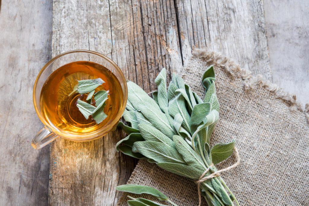 Adaçayının Faydaları Nelerdir? | Bitki Çaylarının Faydaları